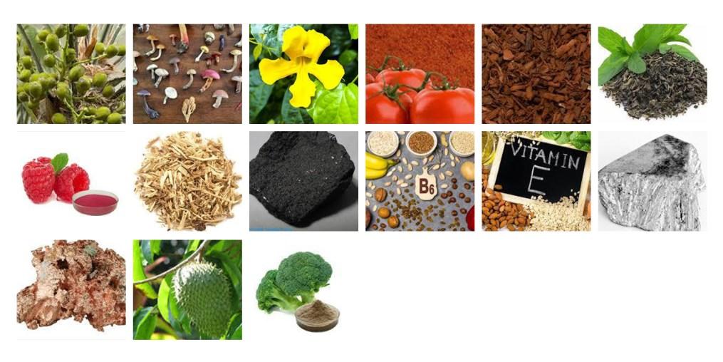 VitalFlow-Ingredients