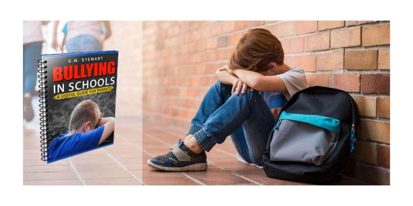 Bullying in Schools eBook working