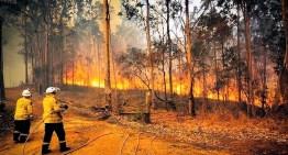 Dicen que los incendios en Australia son una muerte anunciada