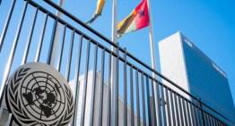 Vaticano alerta que informe de la ONU  ataca libertad religiosa y objeción de conciencia