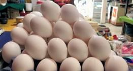 Apercibe Profeco a proveedores  por alzas en precios de tortilla, huevo y gasolina