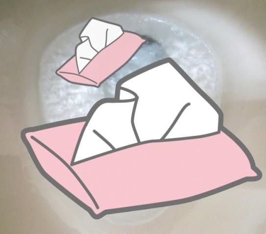 トイレットペーパー 溶かす