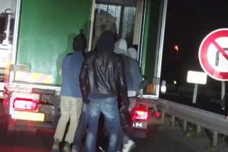migrants-sneaking-into-truck-shocked-to-find-polar-bear