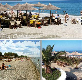 Leptokaria Strand, tengerparti élet