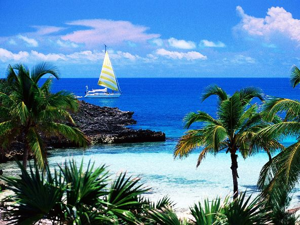 Bahamák