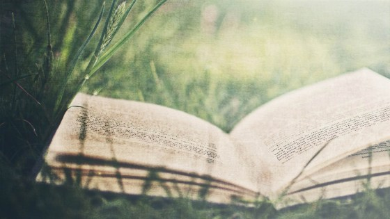 open_book_on_green_grass-summer_landscape_wallpaper_1920x1080