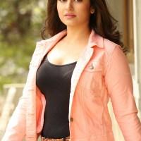 Poonam Bajwa South Indian actress