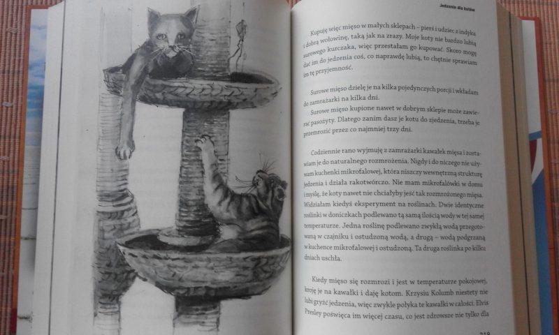 Kot-dla-poczatkujacych-wnetrze