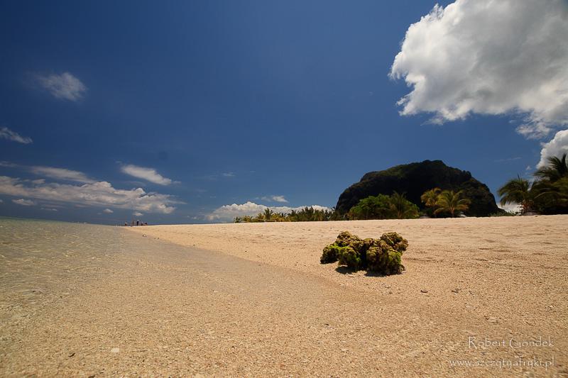 Plaża na półwyspie Le Morne Brabant