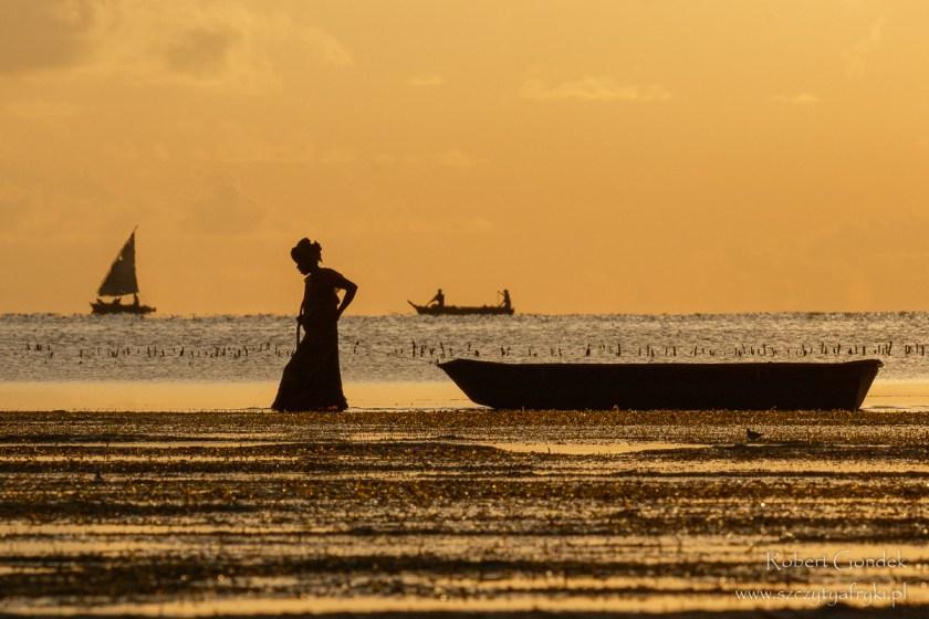 Wschód słońca na Zanzibarze