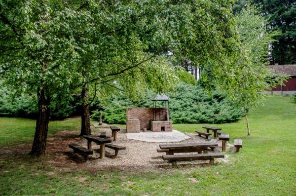 Miklósfai parkerdő