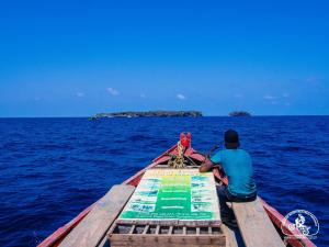 boat trip mr win