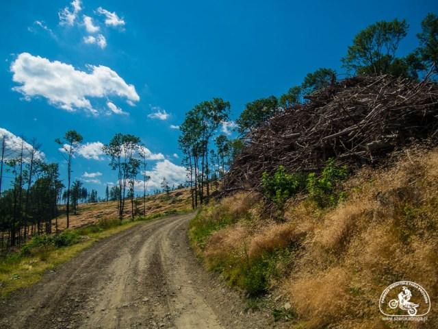 Okolice Nysy - Góry Opawskie
