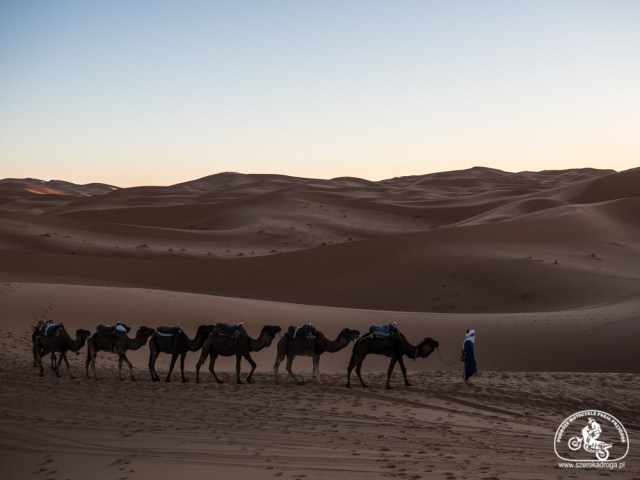 maroko wycieczka na pustynię