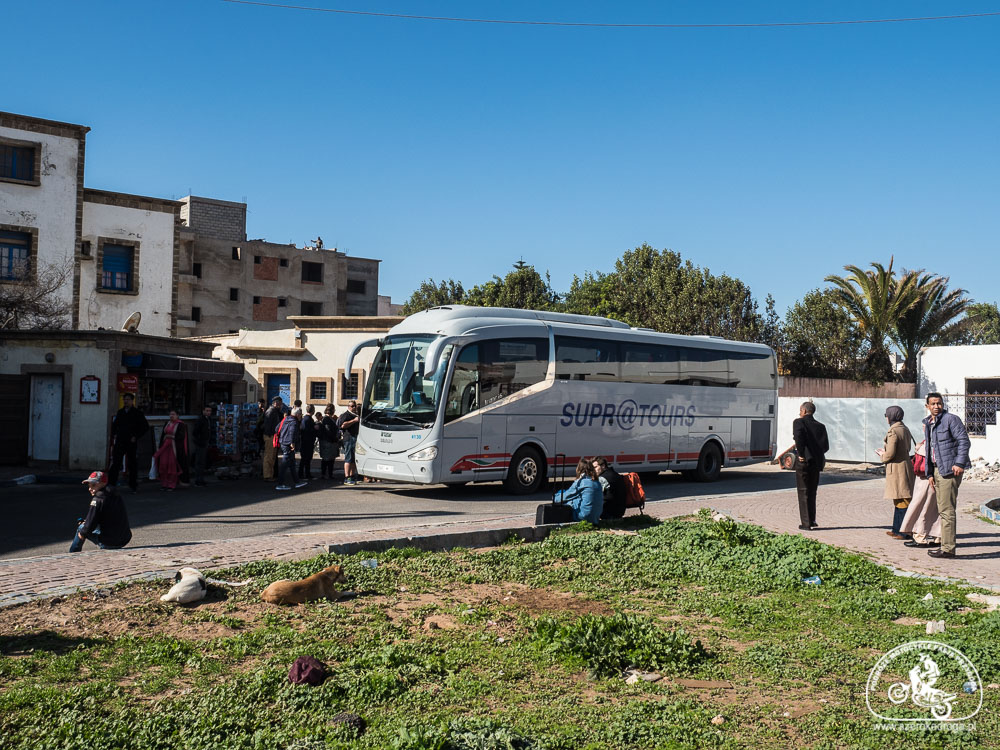 Essaouira dojazd autobus