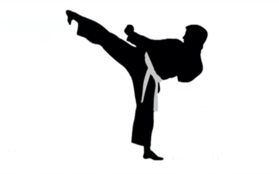 E-karate World Series 2021 Edition eredménye