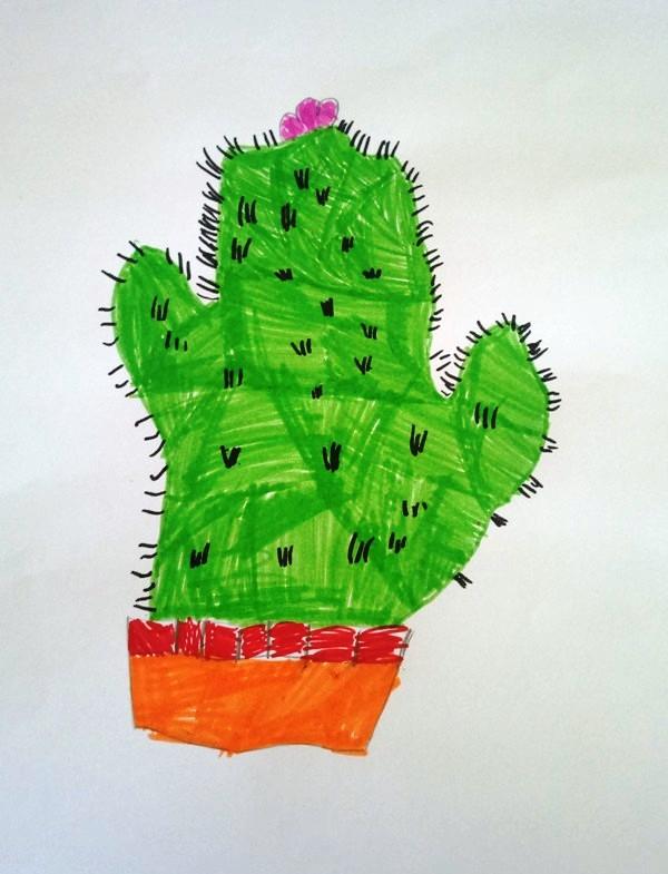 kaktus Aleksa