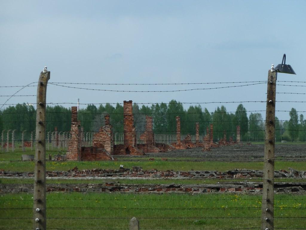 Auschwitz (12)