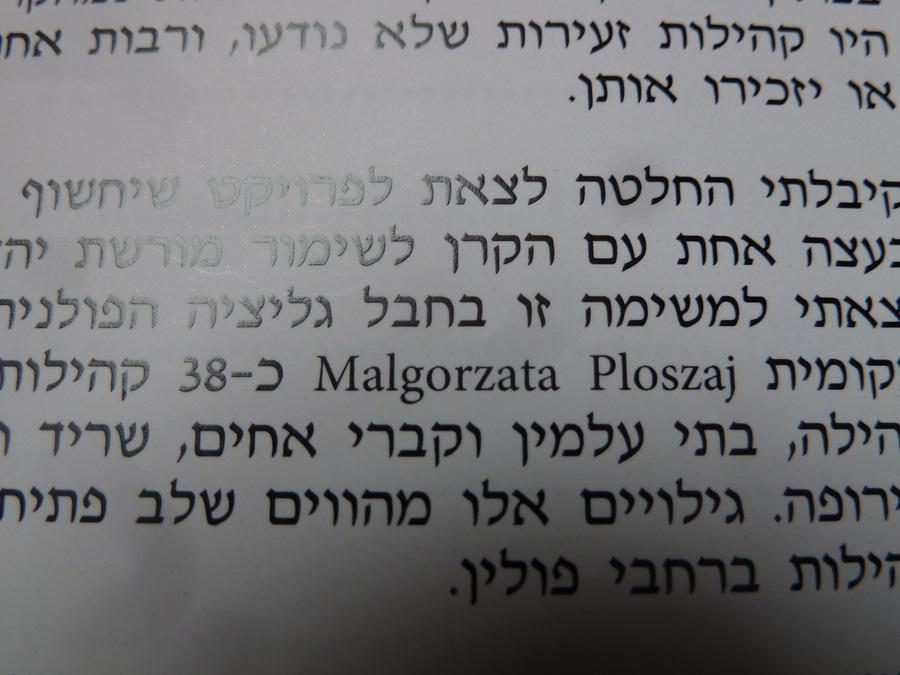 Book Meir Shilloh (3)