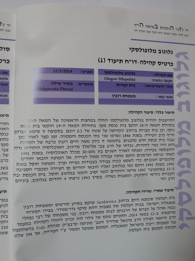 Book Meir Shilloh (6)