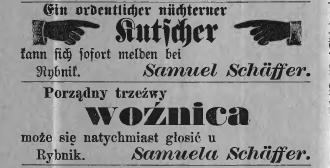 S.Schaffer 1883 Ryb.Kreisblat