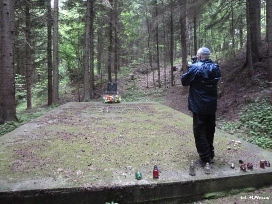 Rzepiennik Strzyzewski i Las Dabry (39)