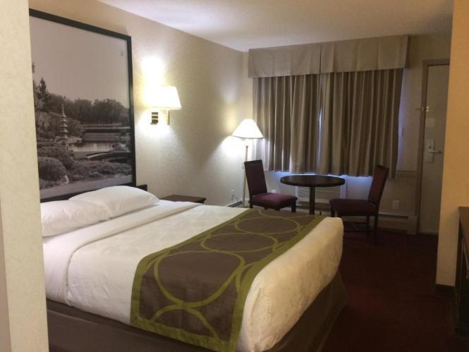 Super 8 Lethbridge Canada Rooms