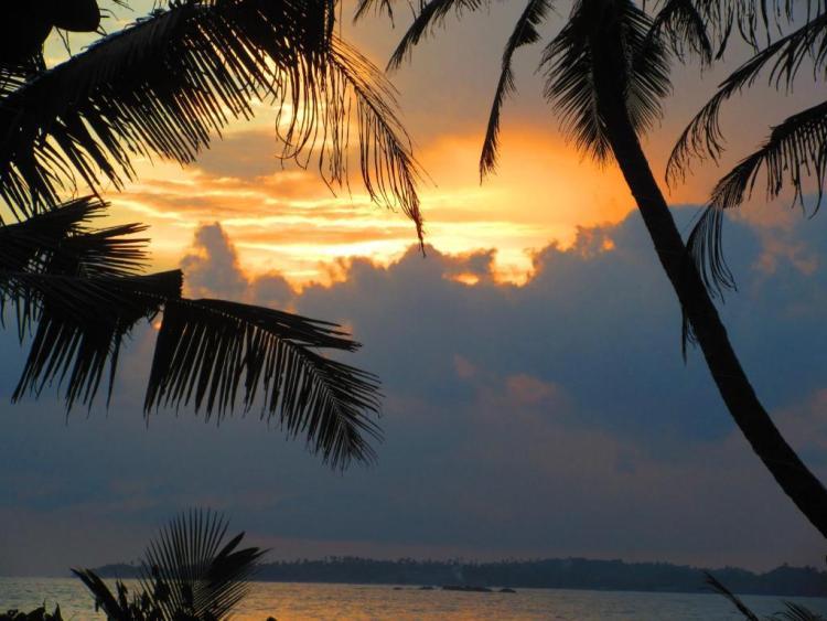 Шри-Ланка отели в Мириссе