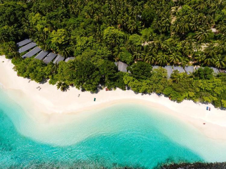 Роял Айленд Мальдивы