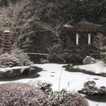 10年に一度の絶景!?毘沙門堂の雪景色