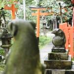 狛ねずみが大人気!大豊神社のねずみがモチーフの授与品