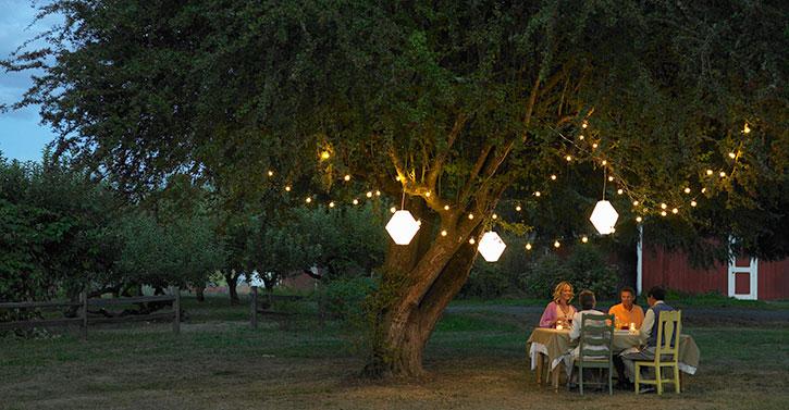 16 Creative Backyard Lighting Ideas