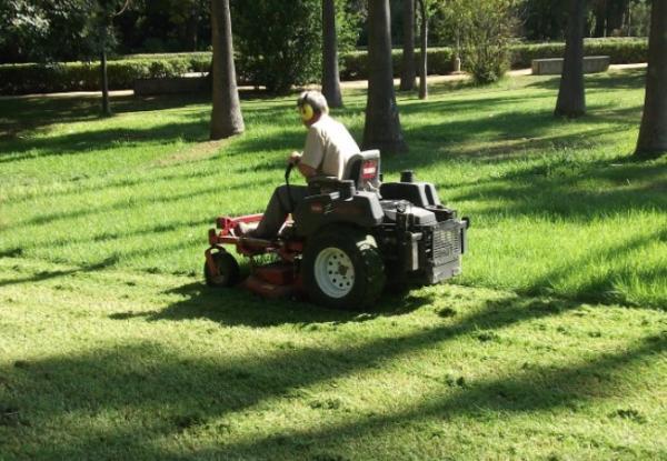 Garden care: 5 machines that make basic tasks easier - 5 machines that help maintain the garden