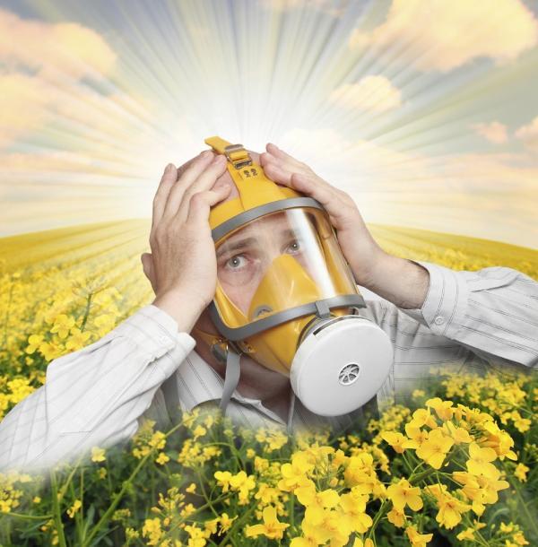 Types of Edible Flowers - Beware of Allergies!