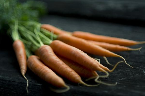 Planting carrots: how and when to do it - When to plant carrots