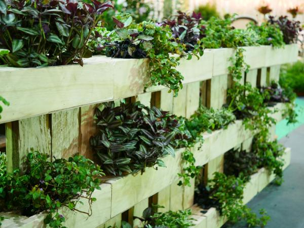 How to make vertical gardens - How to make a vertical garden step by step