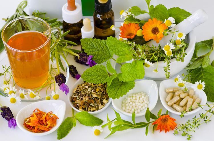 Fitoterapia: ¿qué es y cómo usar las plantas medicinales? -¡Descúbrela!