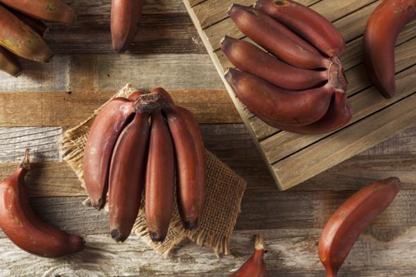 Types of bananas - Red banana