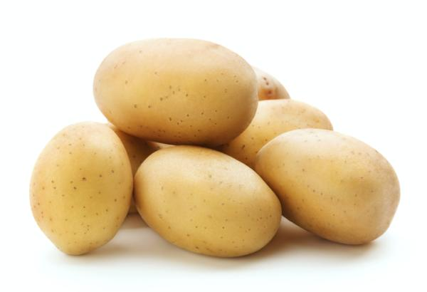 Types of potatoes - Potato Monalisa, one of the most popular types of potatoes