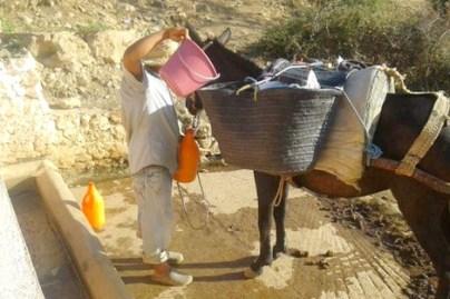 """maroc_soif_680066114 سلطات سوس تقاوم """"العطش"""" .. وخبير يبسط أسباب  أزمة الماء فلاحة"""