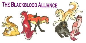 the Blackblood Alliance by Scooby522 on DeviantArt
