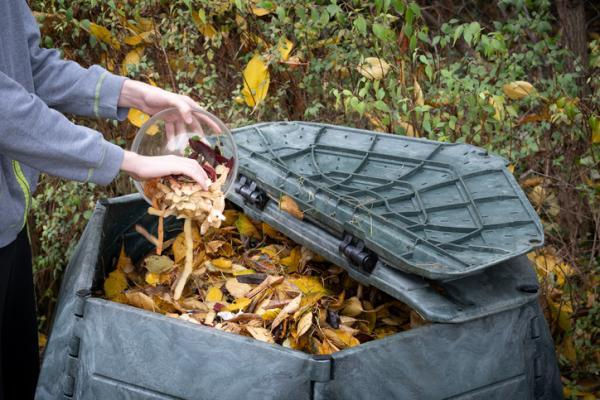 Compost types - Common compost and its types