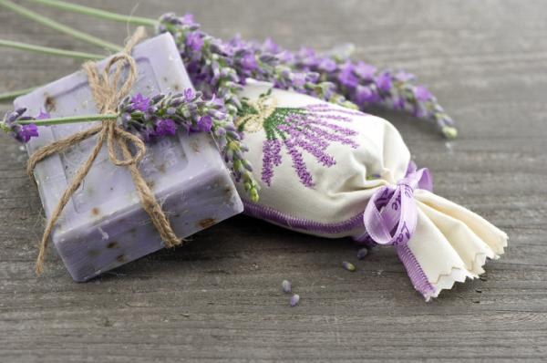 Prune lavender: how and when to do it - Properties of lavender as a medicinal plant