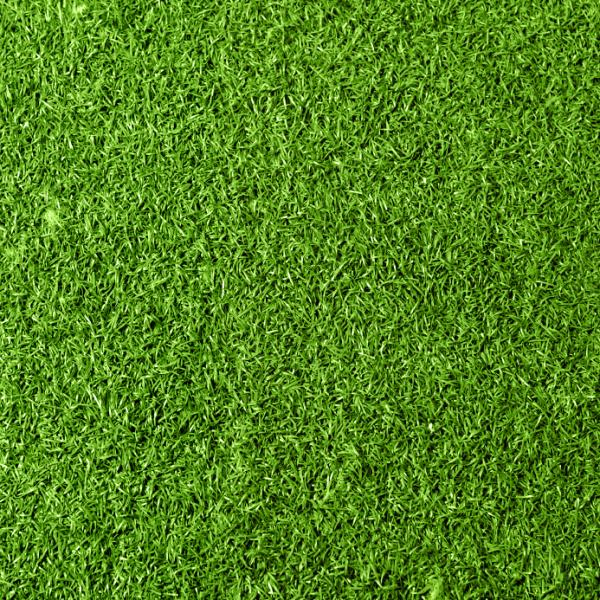 How To Remove Weeds From Lawn - How To Pull Weeds