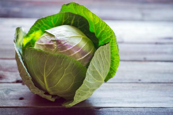 Cabbage types - Cabbage