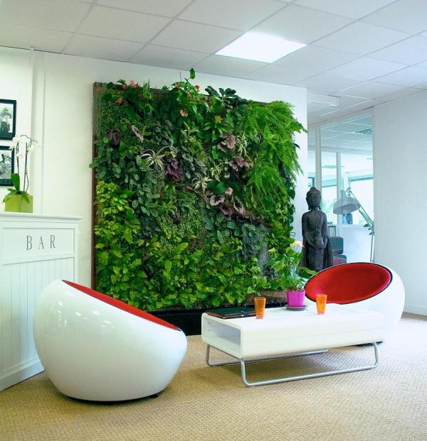 Plants for green walls - Group those for green walls by type