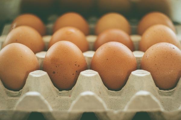 How to make homemade organic fertilizers - How to prepare organic fertilizer with calcium: eggshells