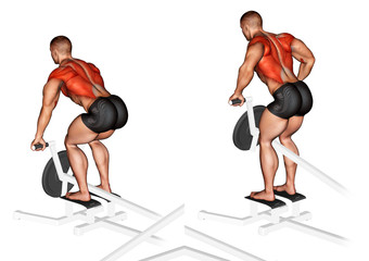 5 Best Exercises for Back t bar rows muscles worked