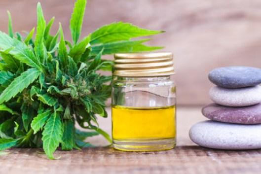 cannabis product oil, CBD