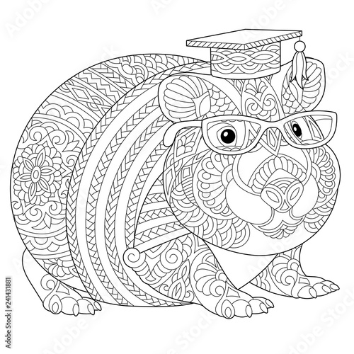 guinea pig coloring page # 16